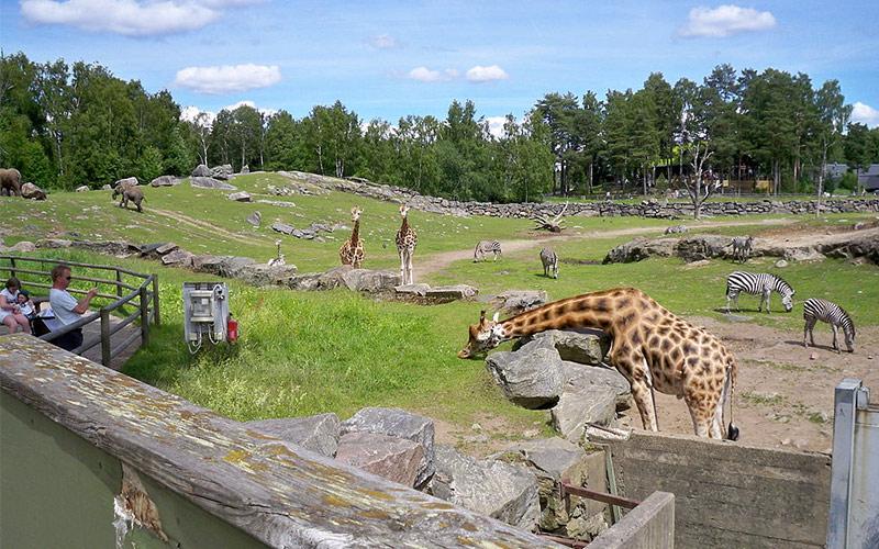 Borås djurpark